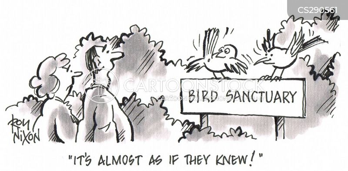 animal charities cartoon