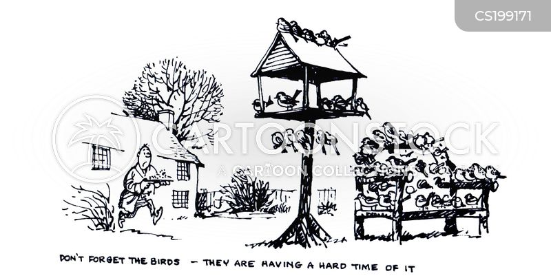 bird seed cartoon