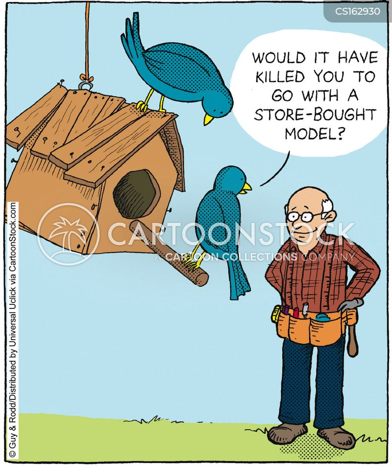 build cartoon