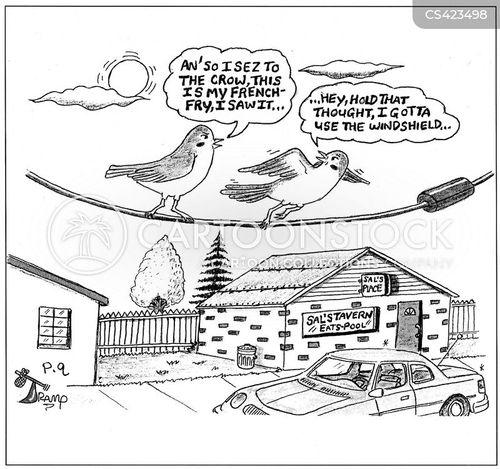 bird poops cartoon