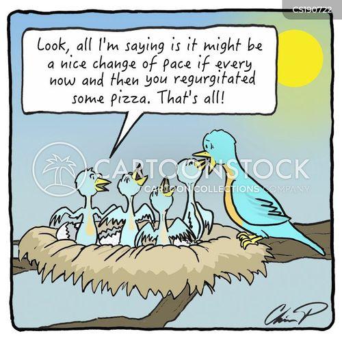 hatchling cartoon