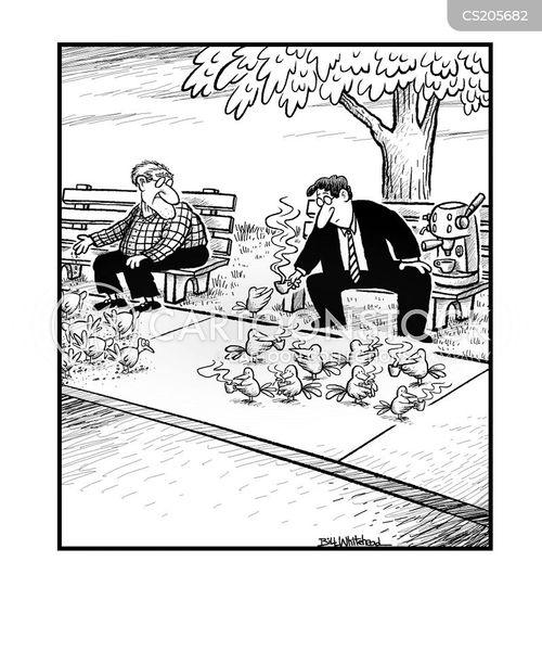 bird feed cartoon