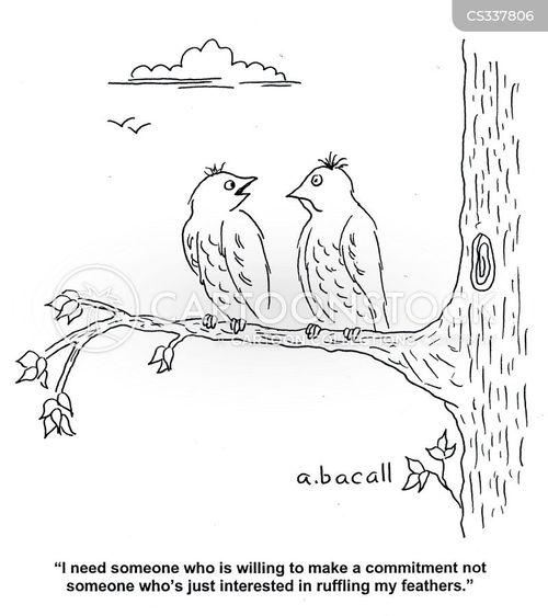 perched cartoon