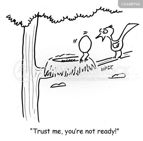 baby-bird cartoon