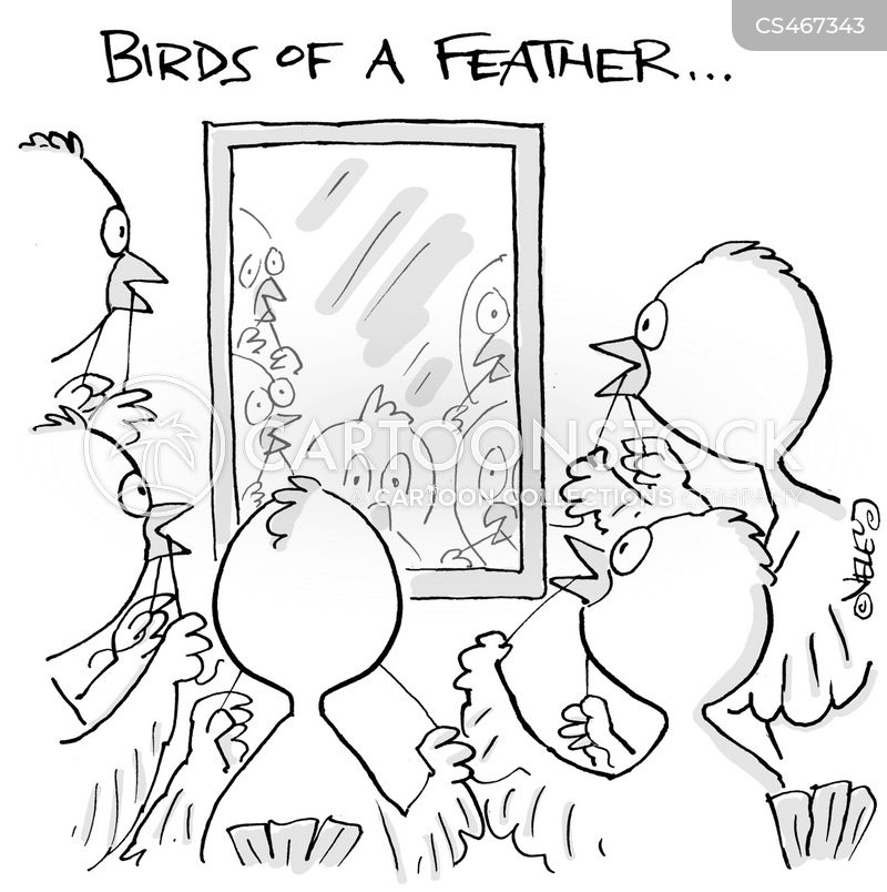 birds of a feather cartoon