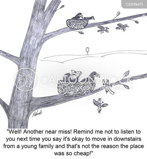 fledgelings cartoon