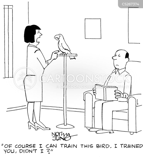 bird lovers cartoon