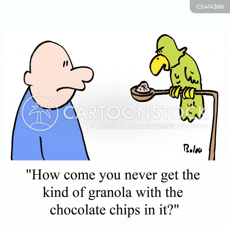 chocolate chip cartoon