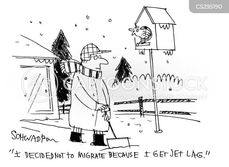 jet lag cartoon