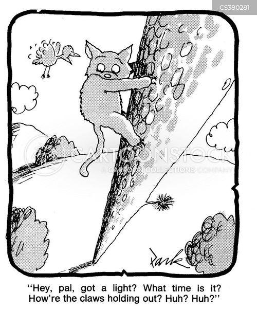 stuck in a tree cartoon