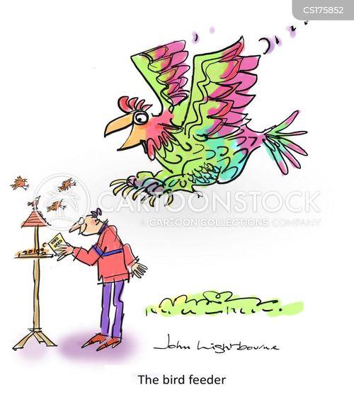 feeding birds cartoon