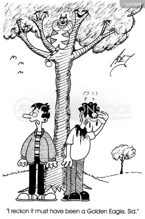 cat up a tree cartoon