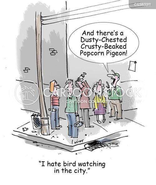 habitations cartoon