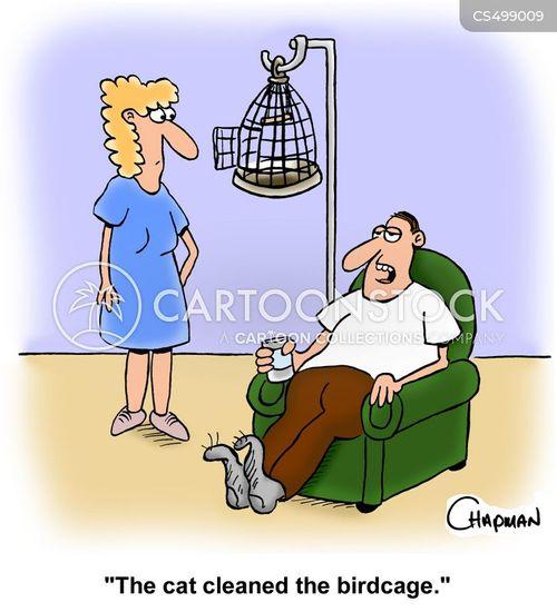 bird-cage cartoon
