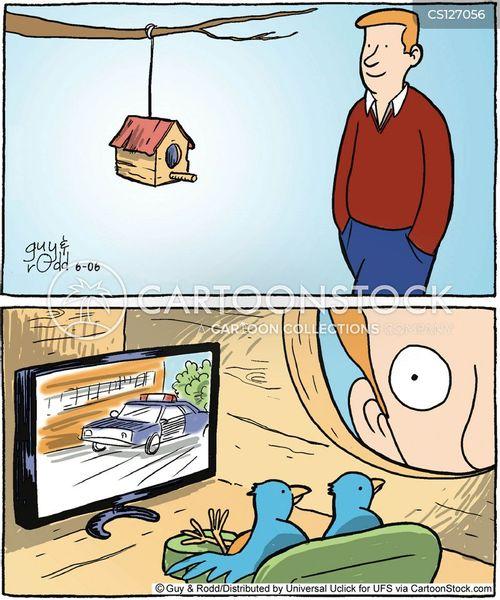 bird houses cartoon