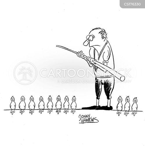 bird habits cartoon