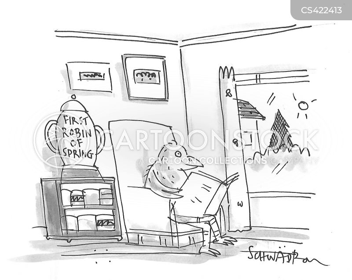 robin cartoon