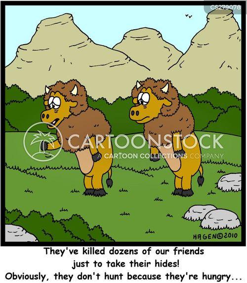 buffalos cartoon