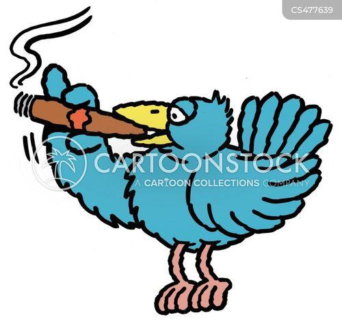 cigar smokers cartoon