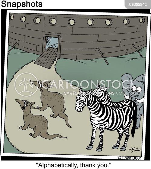 boarded cartoon