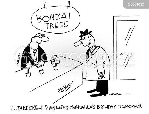 bonsai trees cartoon