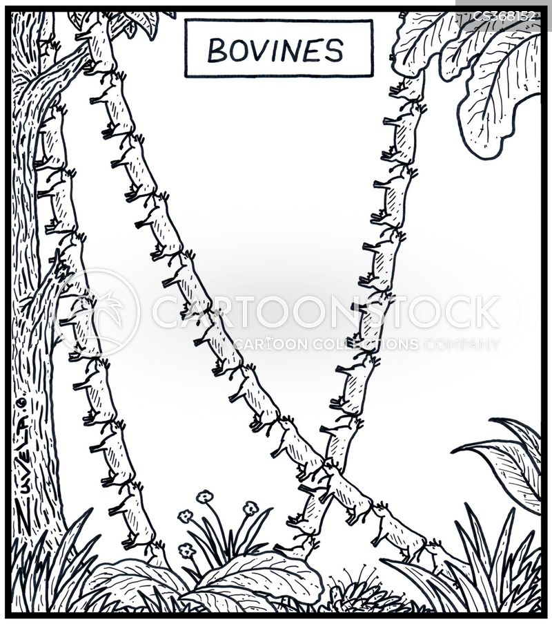 jungle vines cartoon