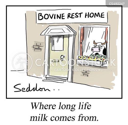 rest home cartoon