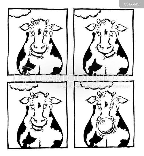ruminate cartoon