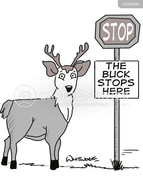 stop signs cartoon
