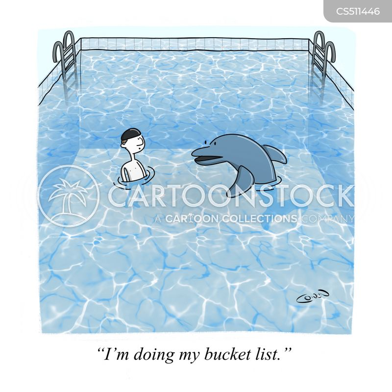 swimming with dolphins cartoon