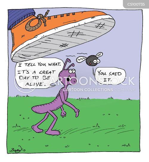 impending doom cartoon