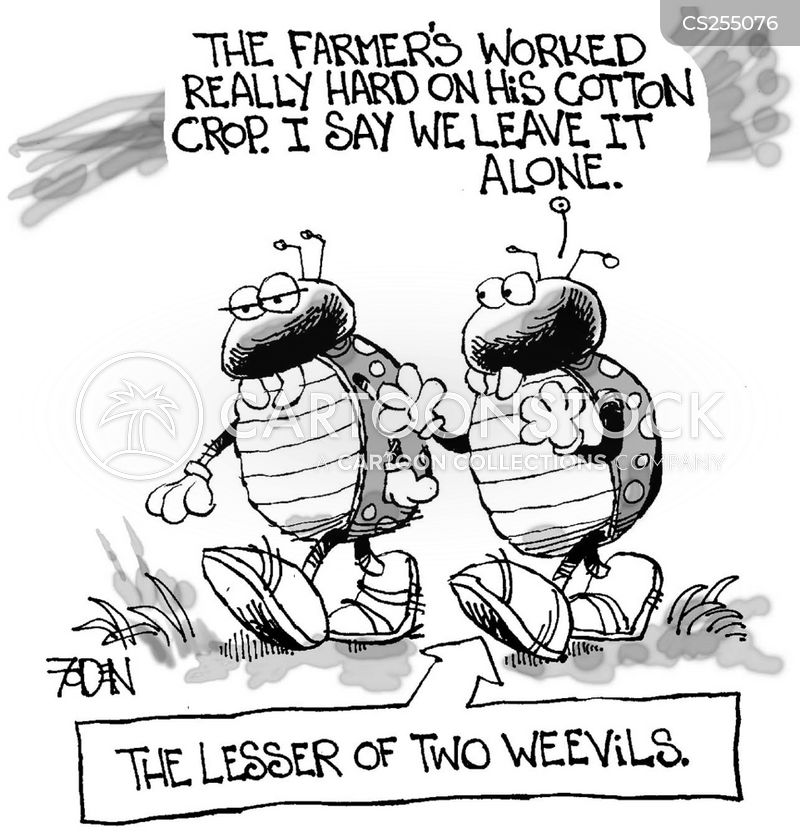 lesser of two evils cartoon