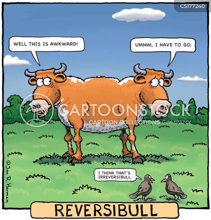 reversible cartoon