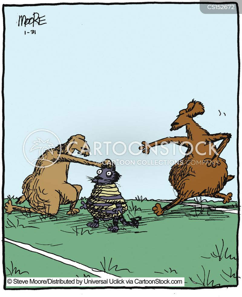 football pitch cartoon
