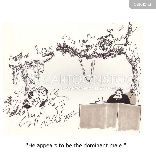 dominate cartoon