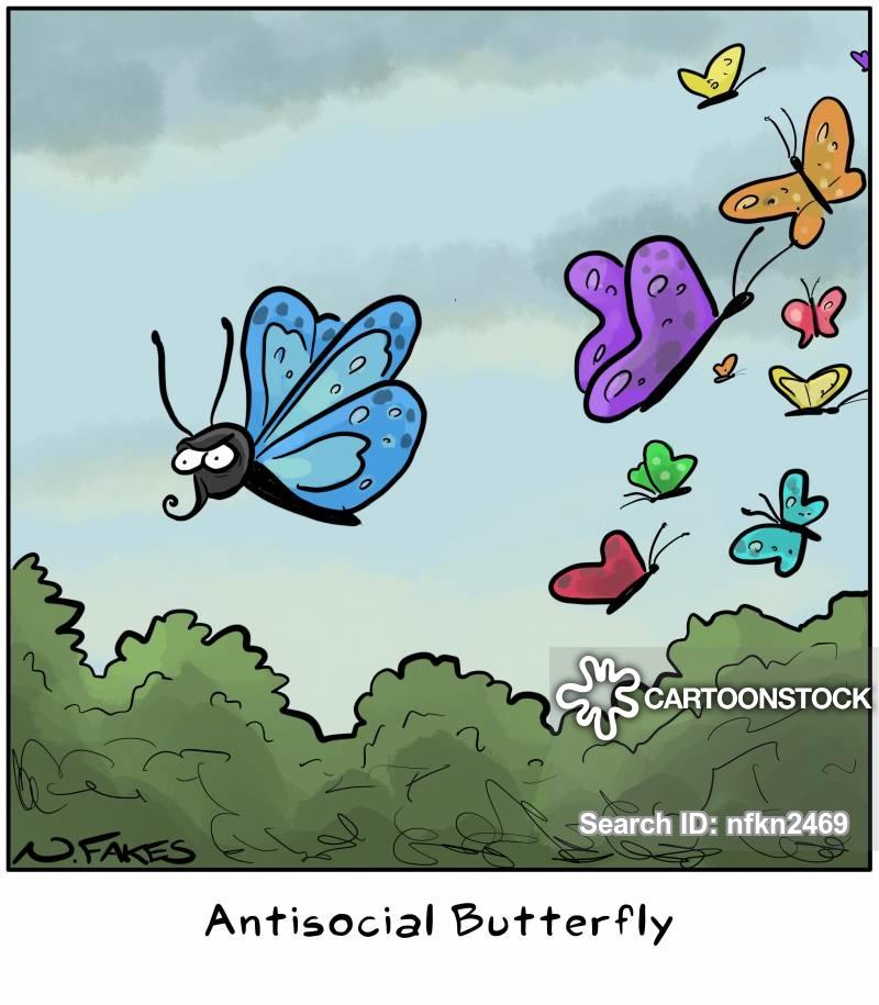social butterfly cartoon