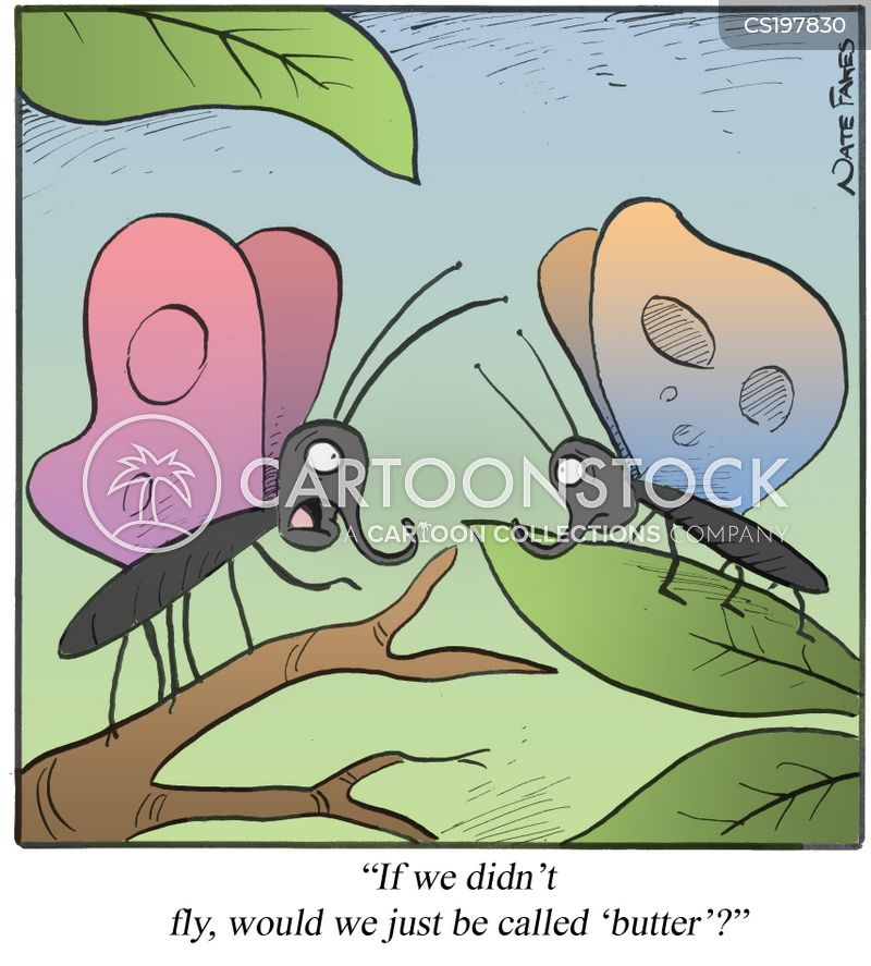 butterfly collectors cartoon