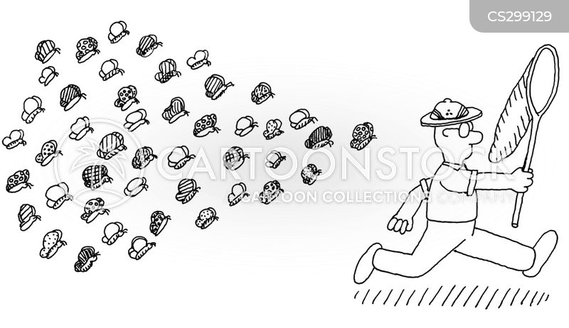 Naturforscher Cartoon, Naturforscher Cartoons, Naturforscher Bild, Naturforscher Bilder, Naturforscher Karikatur, Naturforscher Karikaturen, Naturforscher Illustration, Naturforscher Illustrationen, Naturforscher Witzzeichnung, Naturforscher Witzzeichnungen