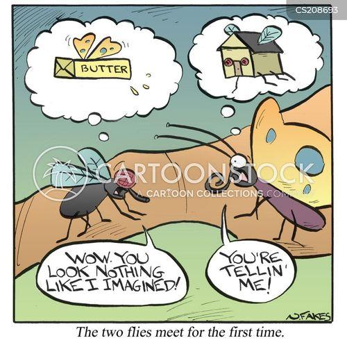 housefly cartoon