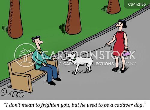 cadaver cartoon