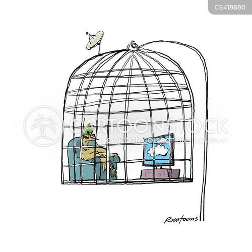 caged birds cartoon