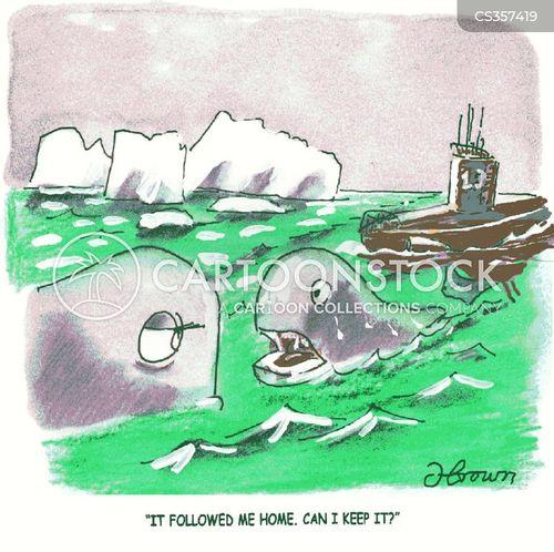 arctic explorers cartoon