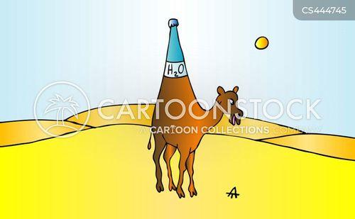 hydration cartoon