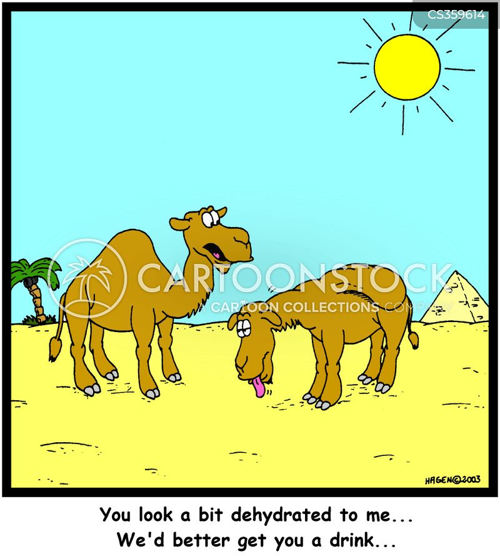 dehydrate cartoon