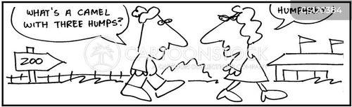 zookeep cartoon