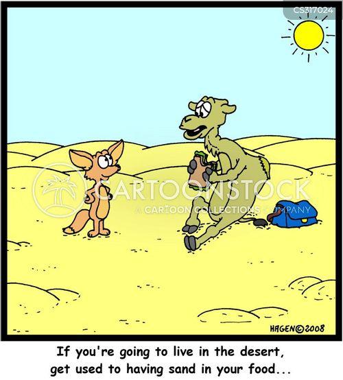 desert foxes cartoon
