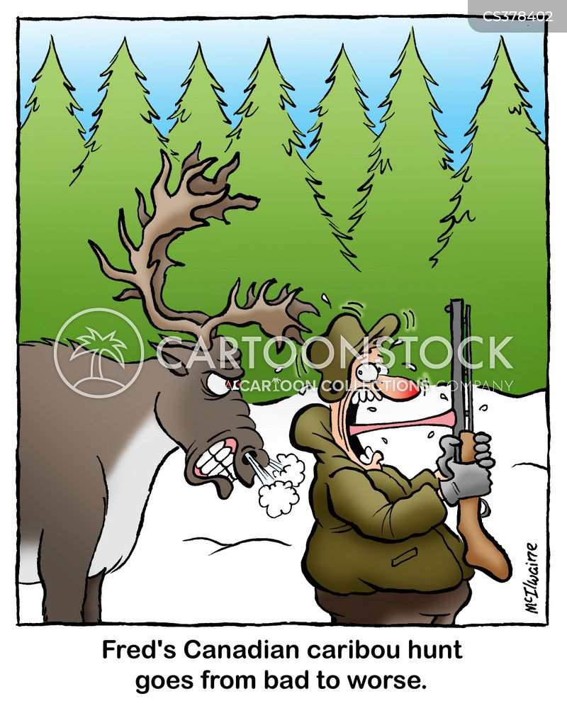 caribou hunts cartoon
