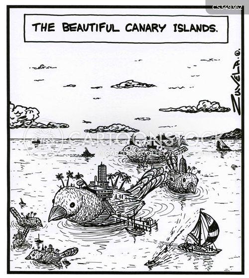 canary islands cartoon