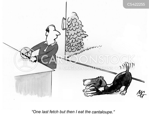 cantaloupe cartoon