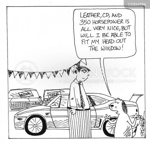 car window cartoon